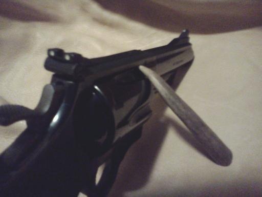 S&W M-29-2 sights