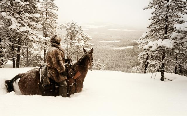 20 below with horse